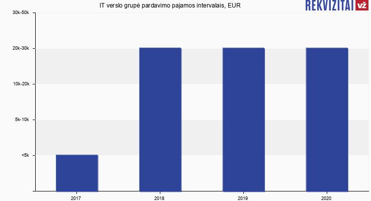 IT verslo grupė pardavimo pajamos, EUR