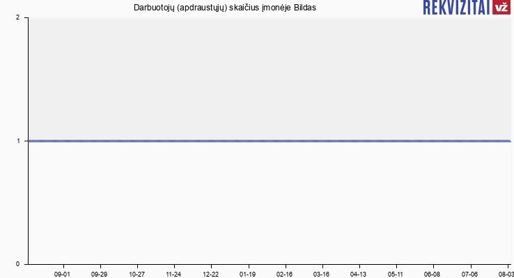 Darbuotojų (apdraustųjų) skaičius įmonėje Bildas