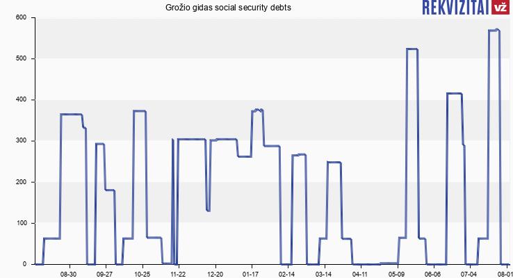 Grožio gidas social security debts