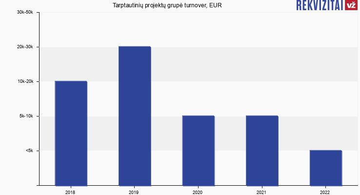 Tarptautinių projektų grupė turnover, EUR