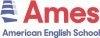 American English School, Utenos filialas, VšĮ logotipas