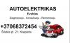 Autoelektrikas Evaldas logotipo