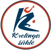 Dariaus Numgaudo individuali veikla логотип