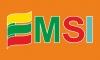 Emsi, UAB logotipas