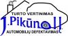 Jono Pikūno individuali įmonė logotipas