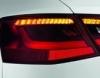 LED darbai, individuali veikla logotipas