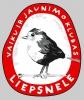 Liepsnelė, Vilniaus Vaikų ir Jaunimo Klubas logotipas
