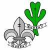 Lietuvos skautų sąjunga logotype