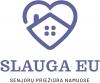 Manevras, VšĮ logotype