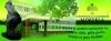 Mažeikių Senamiesčio pagrindinė mokykla logotipas