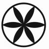 Medvisus, UAB logotype