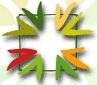 Nacionalinė katalikiškųjų mokyklų asociacija логотип