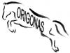Origonas, sporto klubas logotype