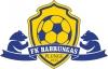 Plungės futbolas, VšĮ logotype