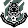 """Vaikų futbolo akademija """"Geležinis vilkas"""" logotipas"""