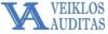 Veiklos auditas, UAB logotipas