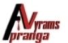 Žilvino Verbylos individuali veikla logotipas