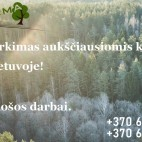 Miško pirkimas aukščiausiomis kainomis, visoje Lietuvoje!