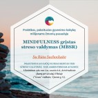 MINDFULNESS grįstas streso valdymas (MBSR)