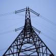 elektros neturi apie 2 000 vartotoju