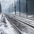 lietuvos gelezinkeliuose elektra liejasi laisvai