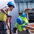 medienos ir statybiniu medziagu didmenininkai speriai auga