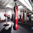moderniausio bokso klubo lietuvoje ikurejai pirmaji ringa surente is paleciu