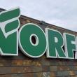norfai pirmas ketvirtis buvo sekmingas