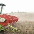 renkame agroverslo lyderi didziausi stabiliausi ir pelningiausi zaidejai