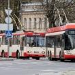 vilniaus viesasis transportas ismokejo 360 000 eur dividendu