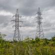 zemes savininkams kompensacijos uz elektros infrastruktura