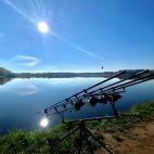 Arvydai
