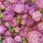 Daveikla, UAB - Gėlių salonas картинка