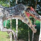 Foto Dinobalt, UAB (302685495)