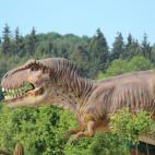Foto la empresa Dinobalt, UAB