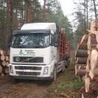 Apvaliosios medienos gamyba