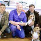 Įmonės Jakovo veterinarijos centras nuotraukos