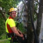 Medžių priežiūra