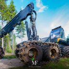 Įmonės Miškų fondas nuotraukos
