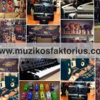 Įmonės Muzikos faktorius nuotraukos