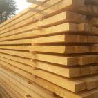 Foto Pilaitės mediena (303410235)