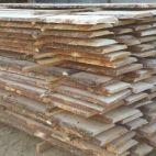 Pilaitės mediena nuotrauka