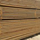 Pilaitės mediena