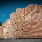 medienos džiovinimas gamtos