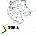 Geodala
