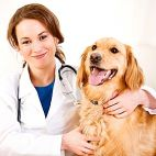 Panemunės veterinarija