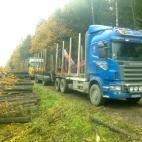 照片 VST Transportas, UAB (302585064)