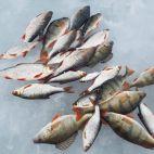 Žvejyba Kirneilio ežere